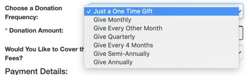 A view of the recurring donation options